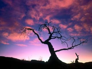 320_The_Dark_Before_the_Dawn_-_1600x1200_-_ID_24216